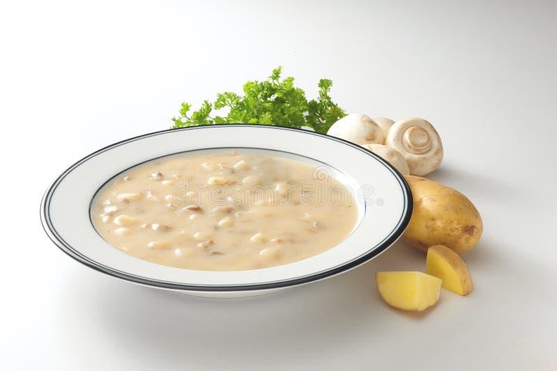 Romige aardappelchampignonsoep stock foto