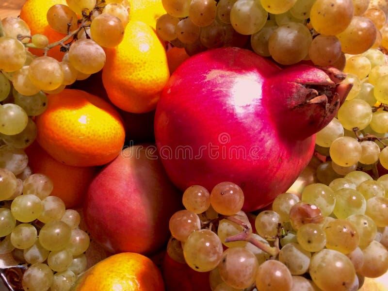 Rommee trägt, Traube, Granatapfel, Apfel, Mandarine Früchte lizenzfreie stockbilder