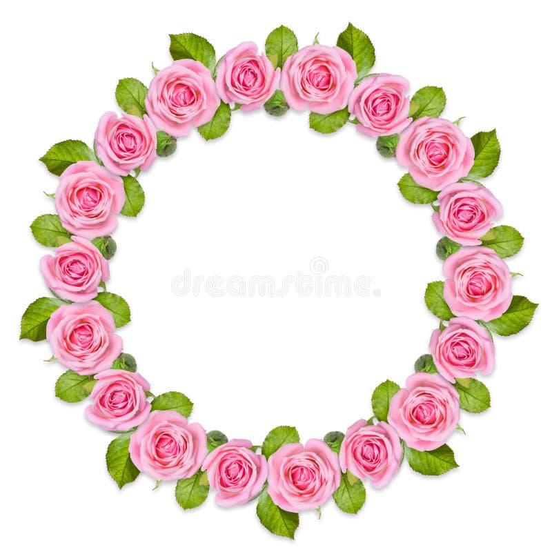 Rond框架花圈被隔绝的由桃红色玫瑰做成在白色背景 免版税库存照片