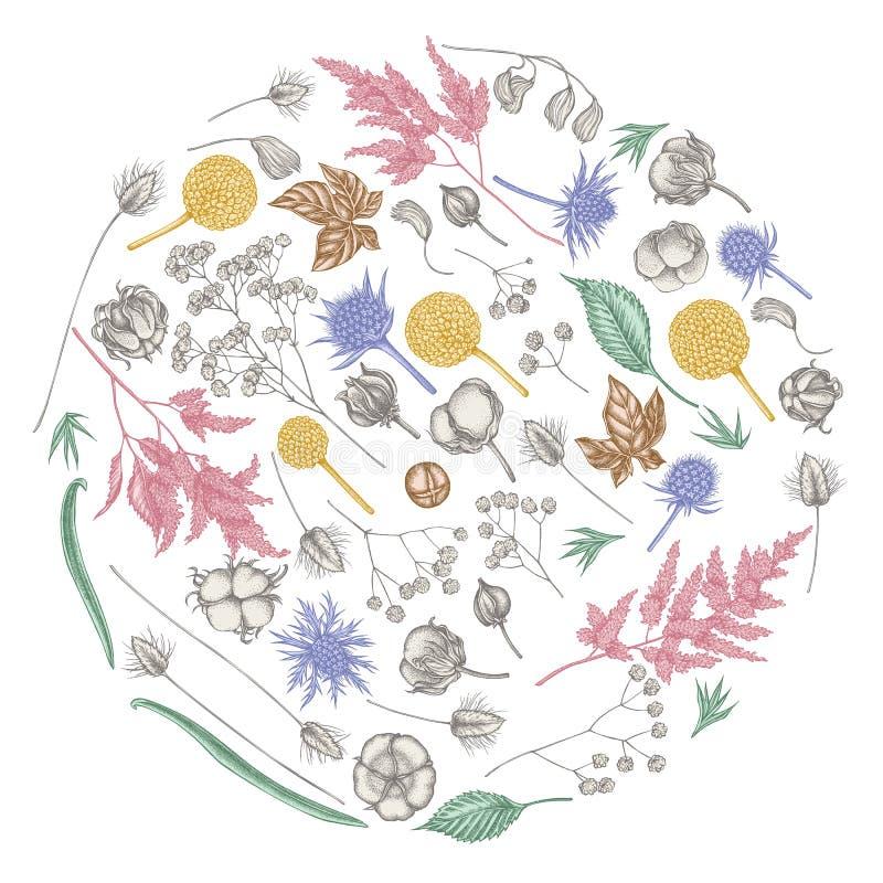Rond bloemenontwerp met pastelkleur astilbe, craspedia, blauwe eryngo, lagurus, katoen, gypsophila vector illustratie