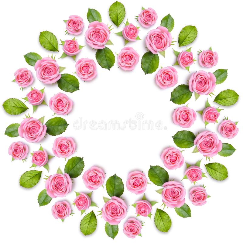 Rond frame wreath made of pink roses isolated on white background. Gentle circular floral ornament. Flower mandala royalty free stock photos