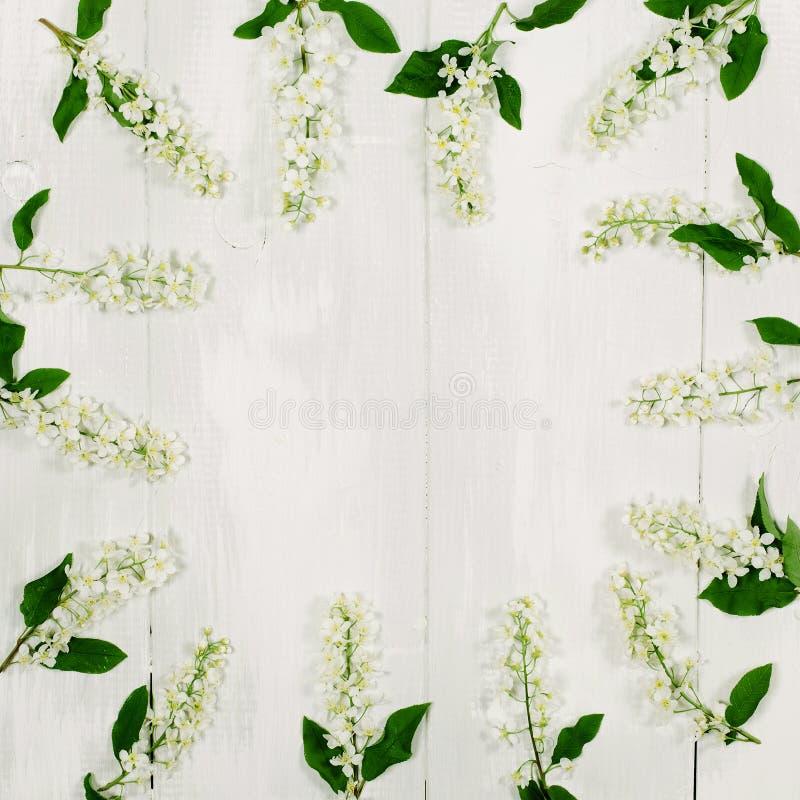 Rond kader met witte bloemen en groene bladeren op witte houten achtergrond De hoogste vlakke mening, legt stock afbeeldingen