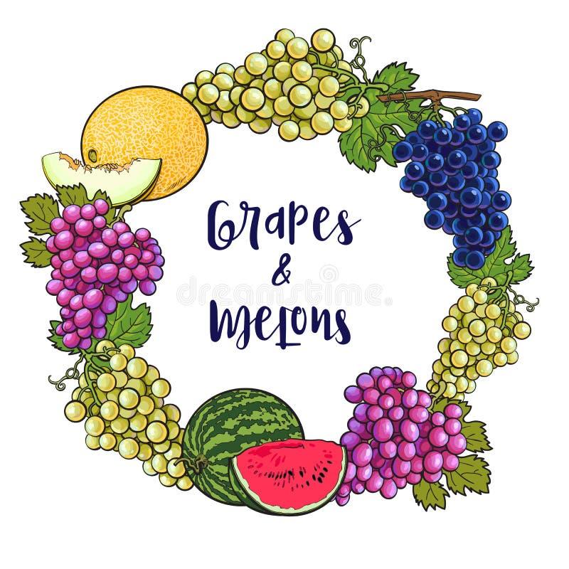 Rond kader van druiven, meloen, watermeloen met plaats voor tekst vector illustratie