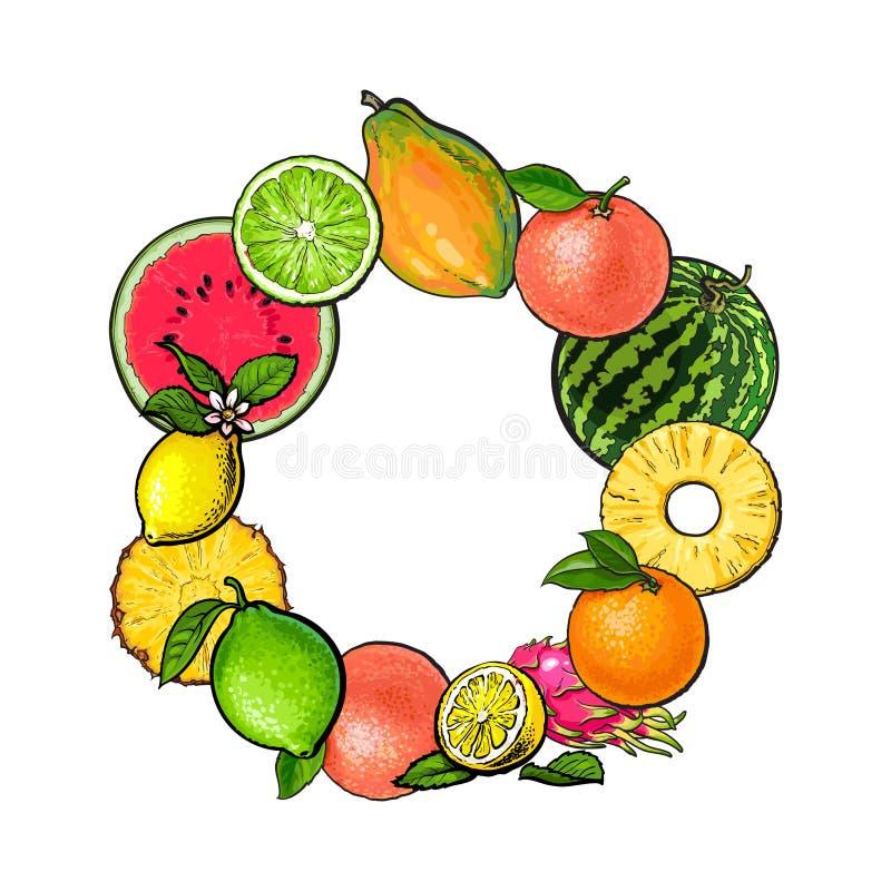 Rond kader van tropische vruchten met lege plaats voor tekst vector illustratie