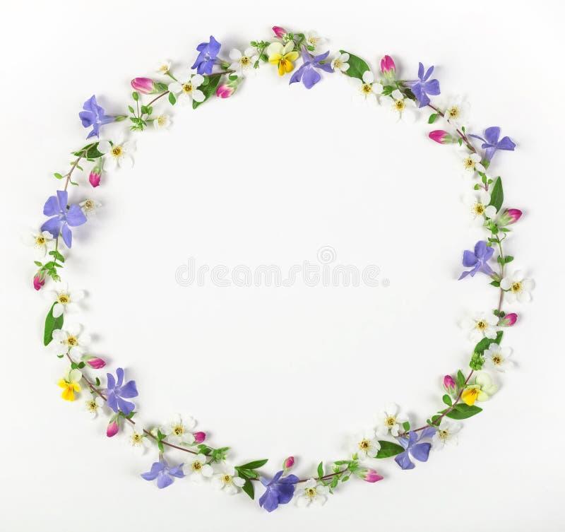 Ronde die kaderkroon van de lentewildflowers, lilac bloemen, roze die knoppen en bladeren wordt gemaakt op witte achtergrond word stock afbeeldingen