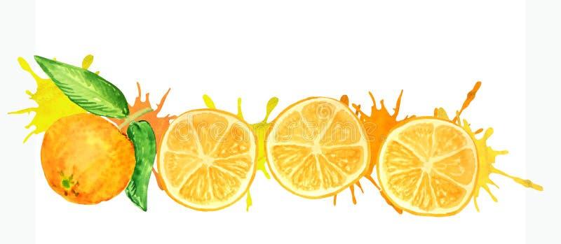 Ronde oranje plakken met sappige plonsen royalty-vrije illustratie