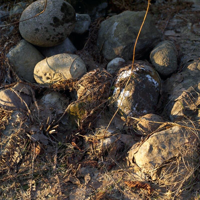 Ronde stenen in een tuin royalty-vrije stock foto