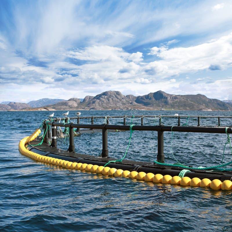 Ronde viskwekerijkooi stock afbeelding