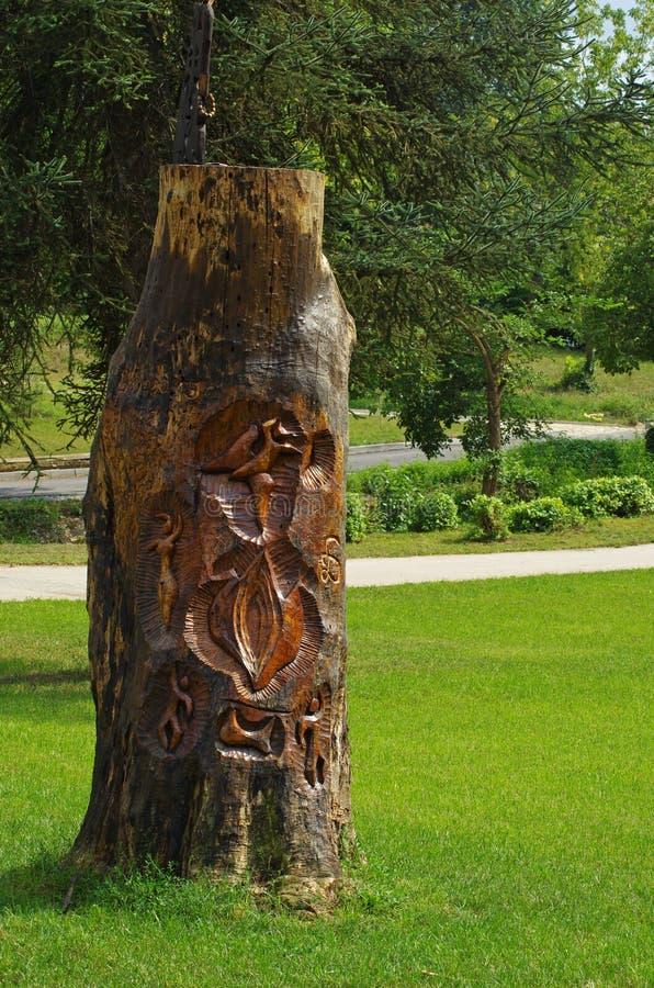 Rondin avec du bois découpant là-dessus image libre de droits