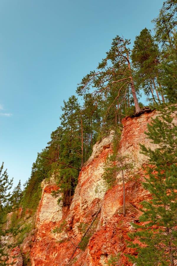 Rondin de cancrelat de roche de gypse de massif de Karst, région d'Arkhangelsk, vue de réservation de Pinezhsky belle images stock