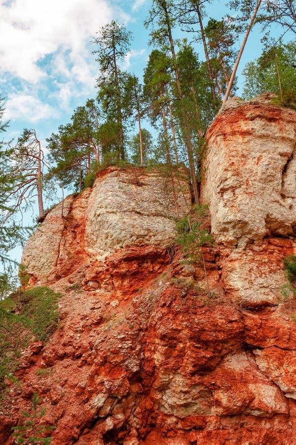 Rondin de cancrelat de roche de gypse de massif de Karst, région d'Arkhangelsk, vue de réservation de Pinezhsky belle photos stock