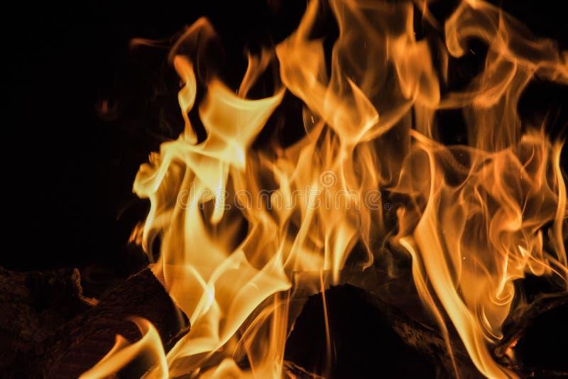 Rondin en bois brûlant Fond noir photos stock