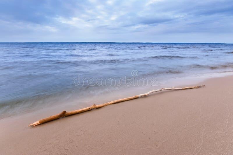 Rondin se trouvant sur le rivage photos libres de droits