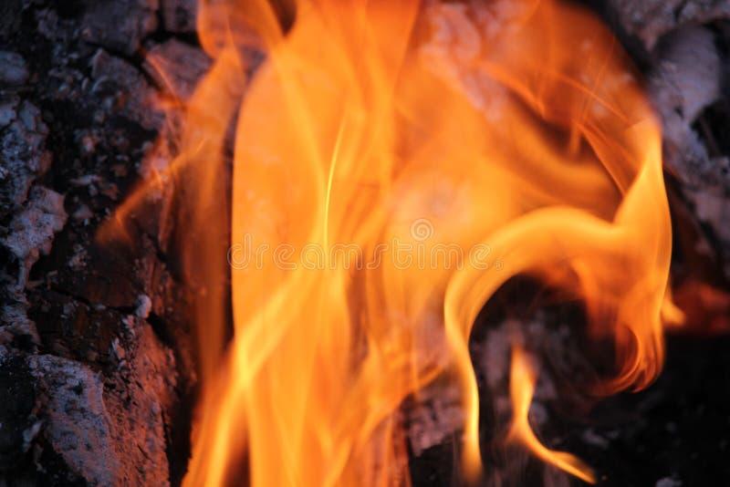 Rondins brûlants avec les flammes nues images stock