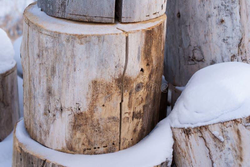 Rondins de couleur claire empilés dans la neige en hiver images libres de droits