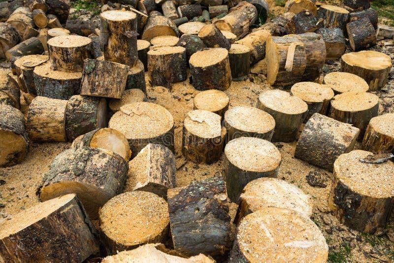 Rondins en bois de chêne photographie stock