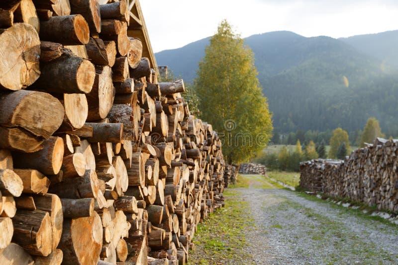 Rondins en bois des bois de pin dans la forêt, empilés dans une pile dans Carpathiens Rondins fraîchement coupés d'arbre empilés  photographie stock libre de droits