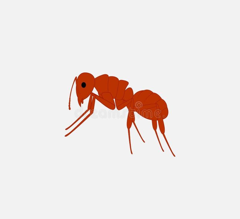 Rood Ant Vector vector illustratie
