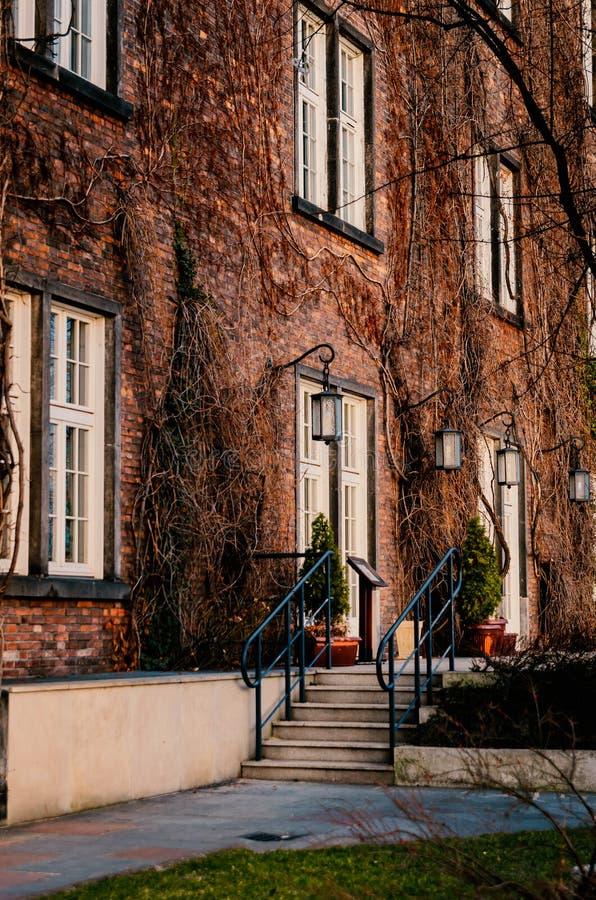 Rood die baksteenhuis met een portiek met droge wijnstokken wordt ineengestrengeld stock afbeeldingen
