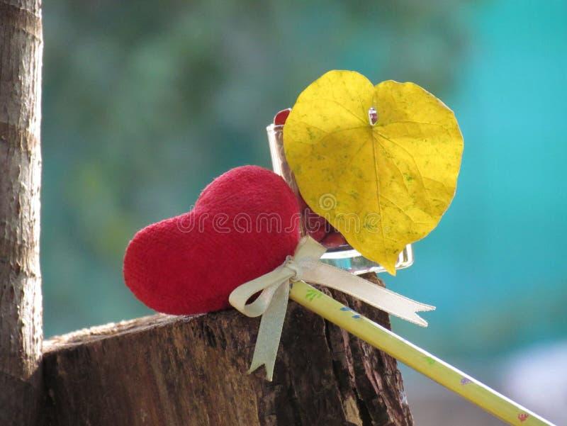 Rood die hart van een handdoek, stok met het potlood, bandlint en hart gevormde gele bladeren in een glas met rode zaden wordt ge royalty-vrije stock fotografie