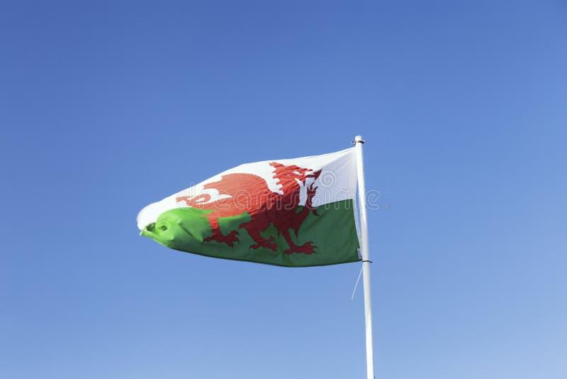 Rood Dragon Flag Waving op de Wind royalty-vrije stock afbeelding