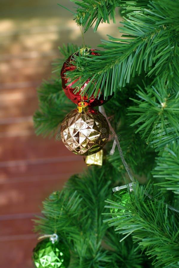 Rood en gouden ornament op pijnboomboom royalty-vrije stock afbeelding