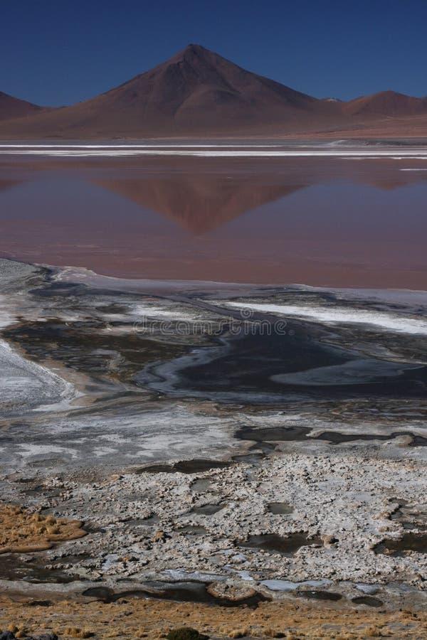 Rood en Wit op Laguna Colorada royalty-vrije stock afbeelding