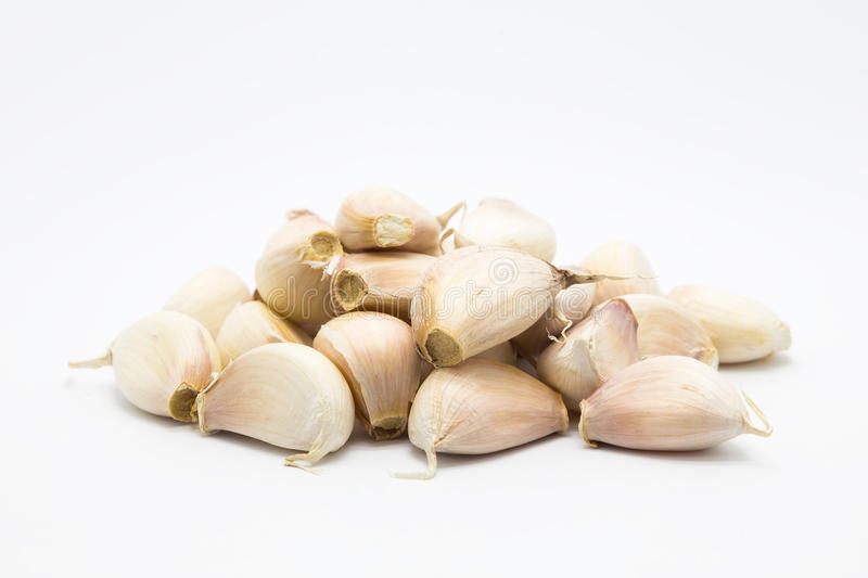 Rood garlic bulb food on white. Background royalty free stock images