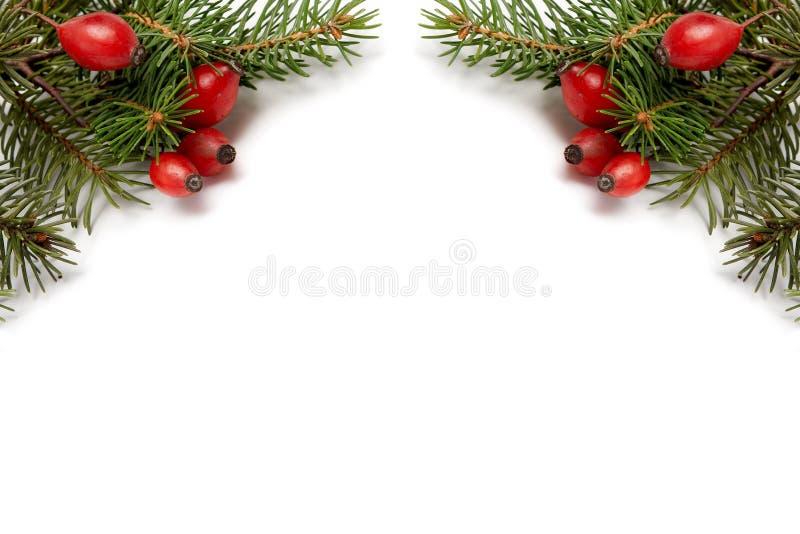 Rood-groene Kerstmisarragement stock foto's
