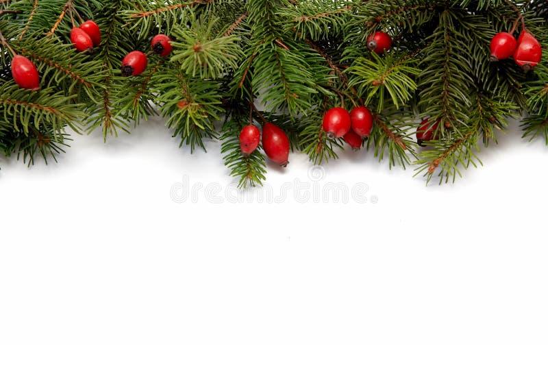 Rood-groene Kerstmisarragement royalty-vrije stock afbeelding