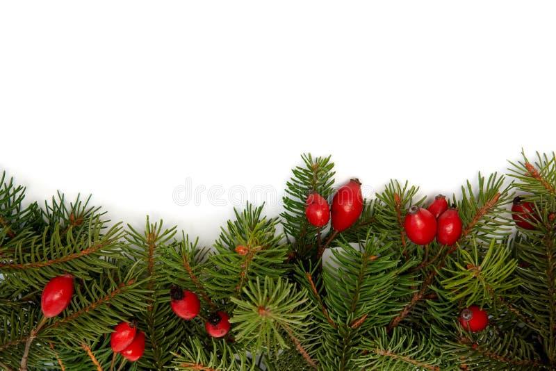 Rood-groene Kerstmisarragement stock afbeeldingen