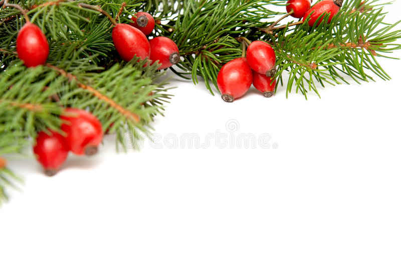 Rood-groene Kerstmisarragement stock fotografie