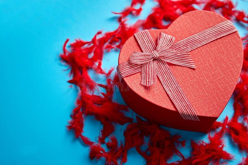 Rood, hart gevormde die giftdoos op blauwe achtergrond onder rode veren wordt geplaatst stock fotografie