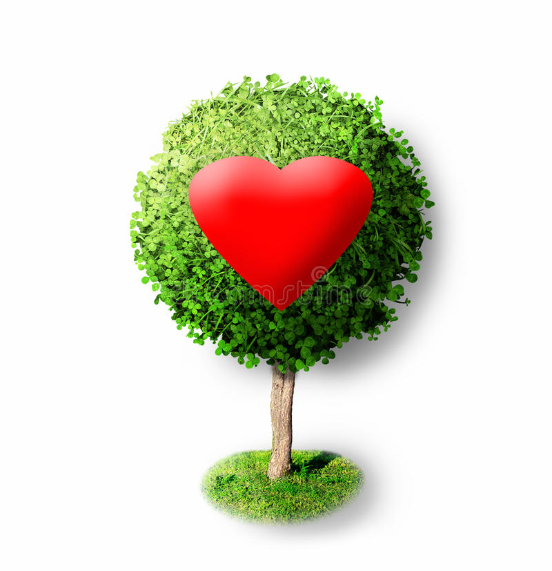 Rood hart op groene boom stock fotografie