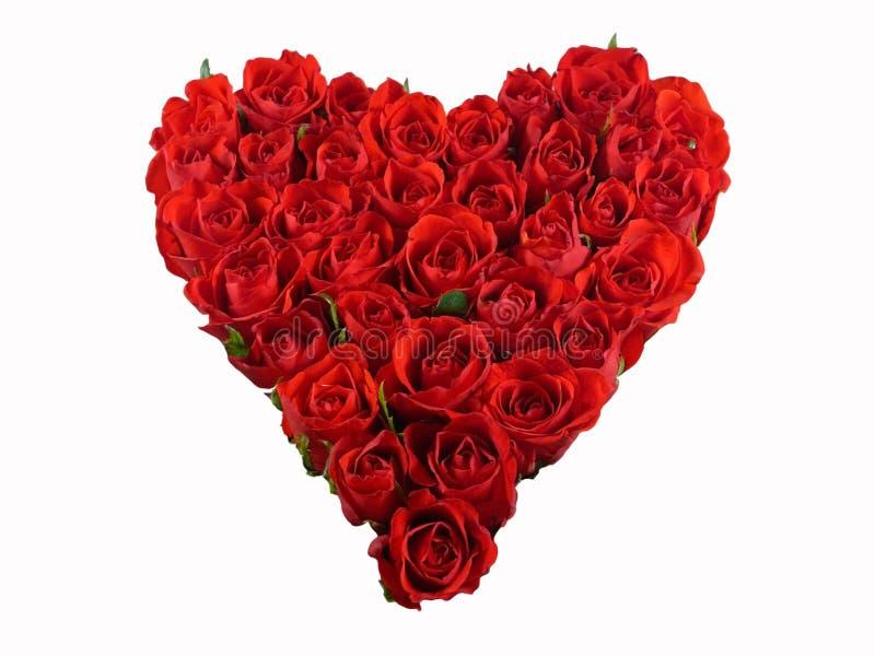 Rood hart van rozen royalty-vrije stock afbeelding