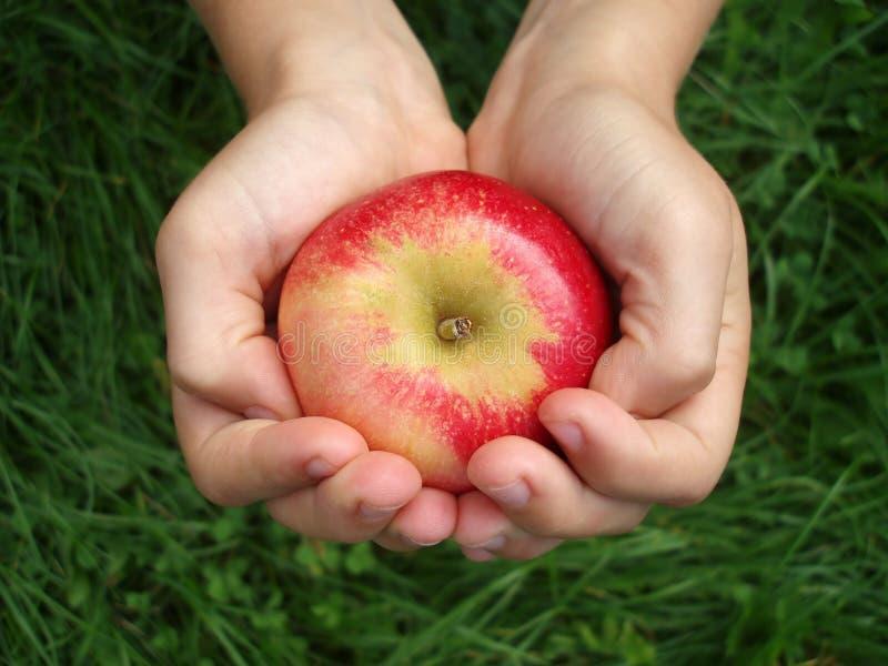 Rood - heerlijke appel stock afbeelding