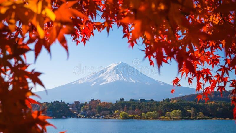 Rood kader van esdoornblad en MT fuji stock foto's