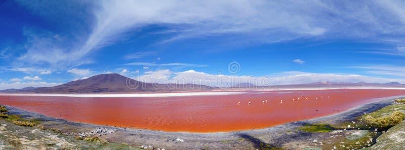 Rood Lagune Rood Meer met Flamingo's in Bolivië royalty-vrije stock afbeeldingen