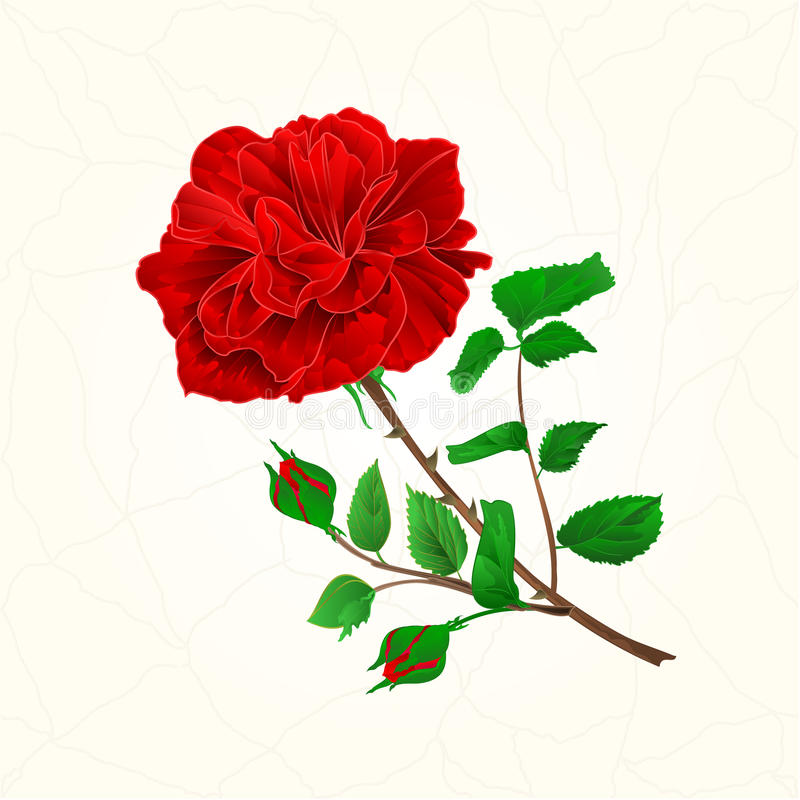 Rood nam barsten in de porselein uitstekende vector toe vector illustratie