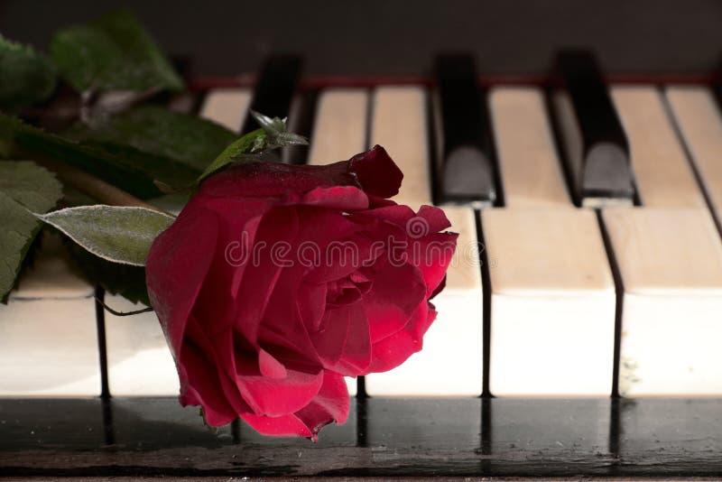 Rood nam en de piano toe stock foto's