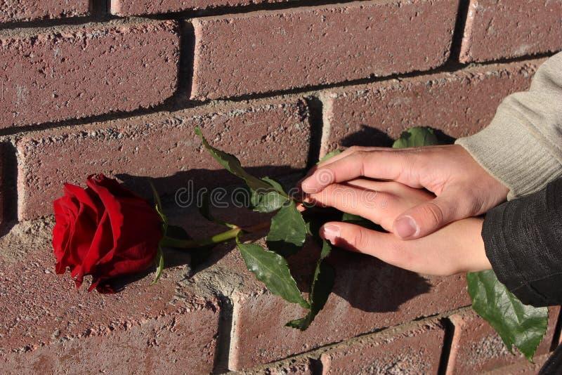 Rood nam op bakstenen muurachtergrond toe Een man hand ligt op de hand van een vrouw Concept liefde Dag en Maart 8 van Valentine stock afbeelding
