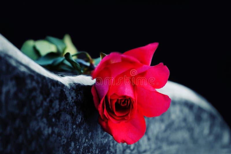 Rood nam op grafsteen toe stock foto's