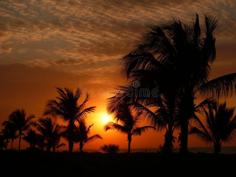 Rood ochtendlicht bij sanibeleiland royalty-vrije stock afbeeldingen