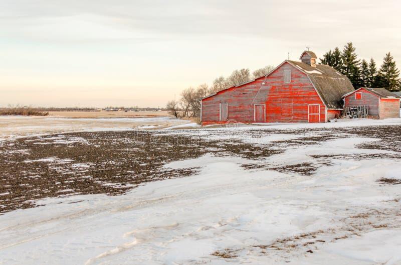 Rood op een wit snow-covered gebied wordt afgeworpen dat stock foto's