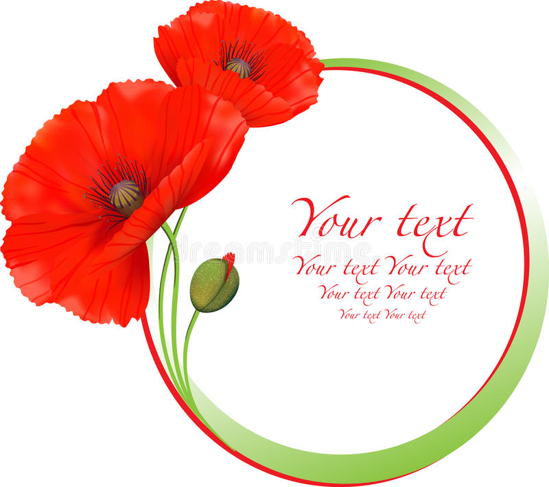Rood papavers bloemen rond kader vector illustratie