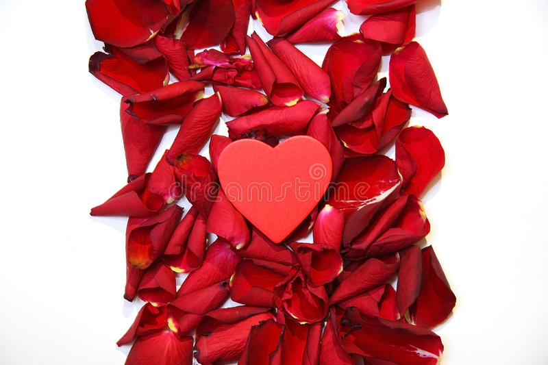 Rood rozenbloemblaadjes en hart royalty-vrije stock foto's