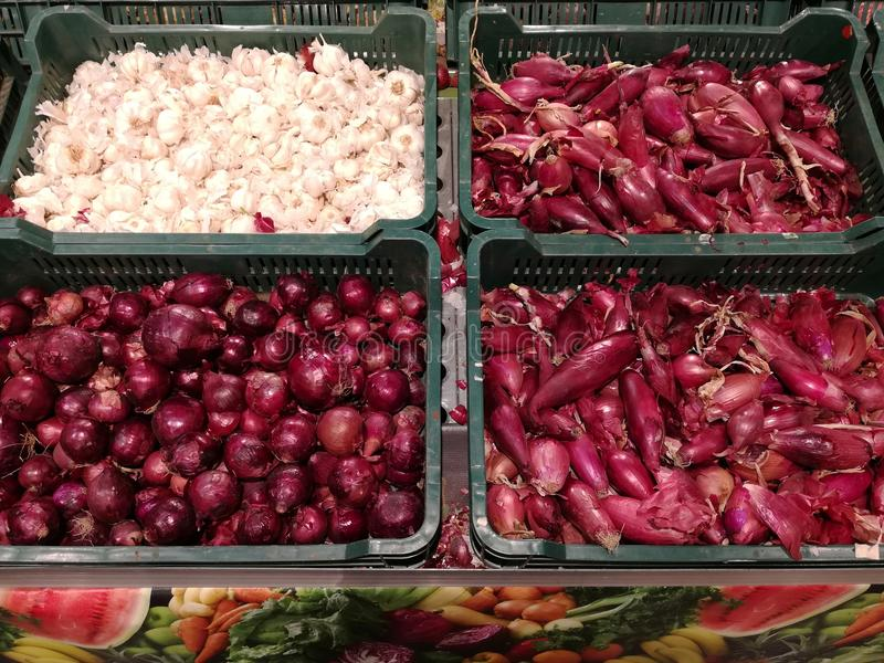 Rood ui en knoflook stock afbeelding