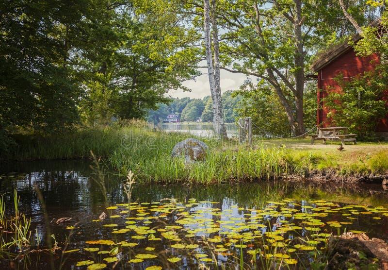 Rood vakantieplattelandshuisje stock fotografie