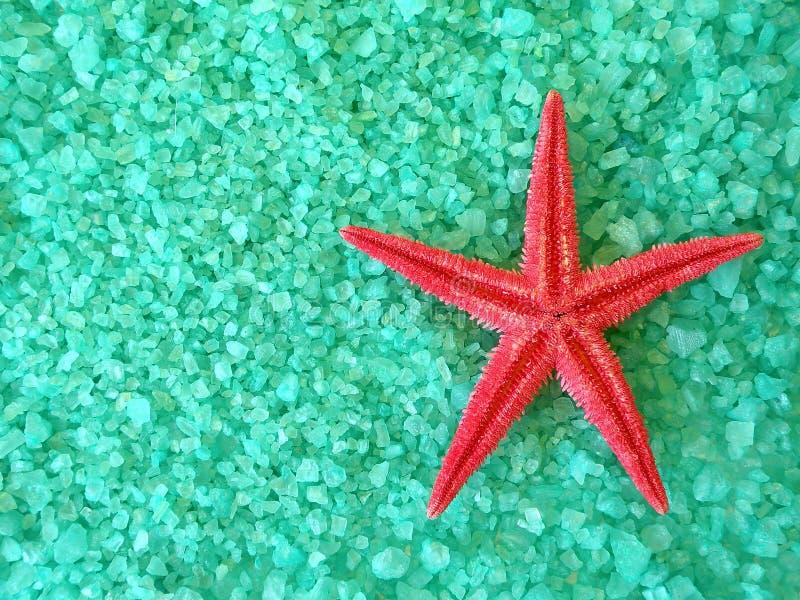 Rood vissenster en zout stock fotografie