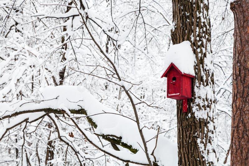 rood vogelhuis in de winterbos royalty-vrije stock fotografie